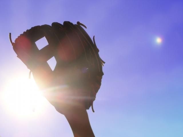 プロ野球 盗塁 記録